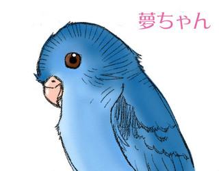 Yumechan.jpg